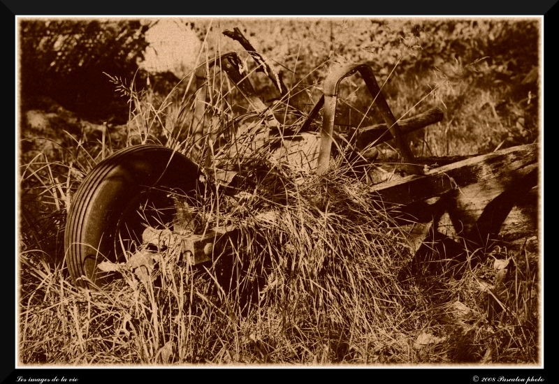 wheelbarrow abandoned.
