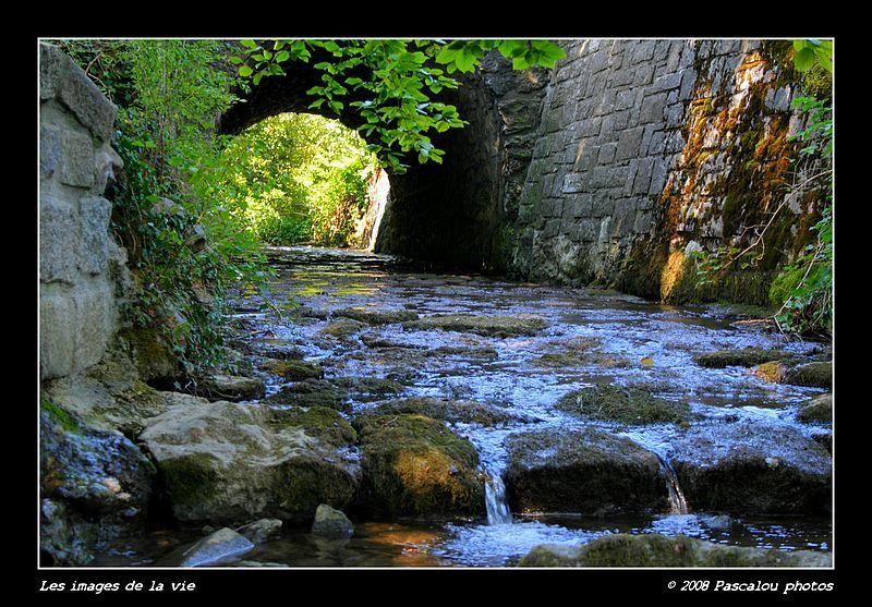 River-