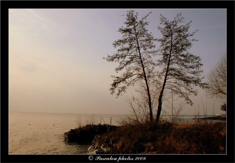Lac léman-