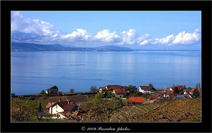 overlooking the village of Lutry and Lake Leman.