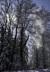 it snowed again in Switzerland!