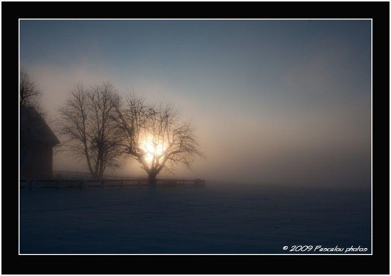 Savigny dans le brouillard
