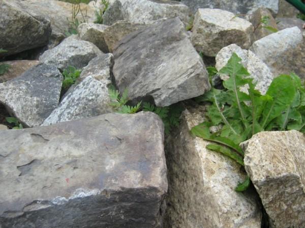 A rock bed.