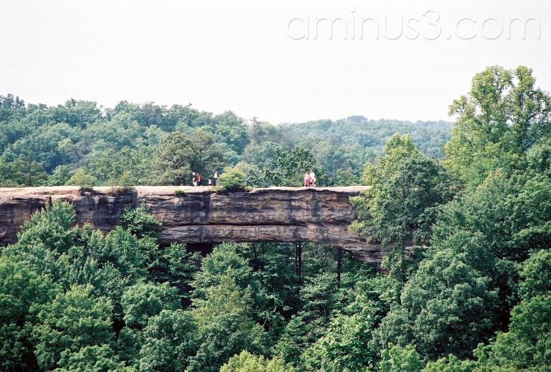 skybridge in red river gorge