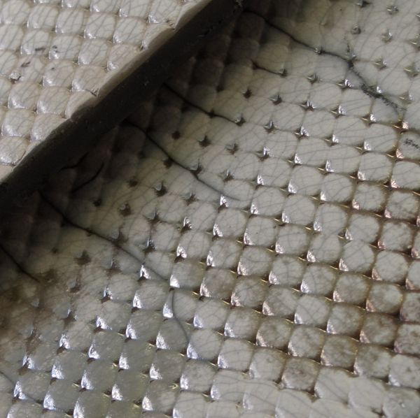 Snake Skin of A different Angle