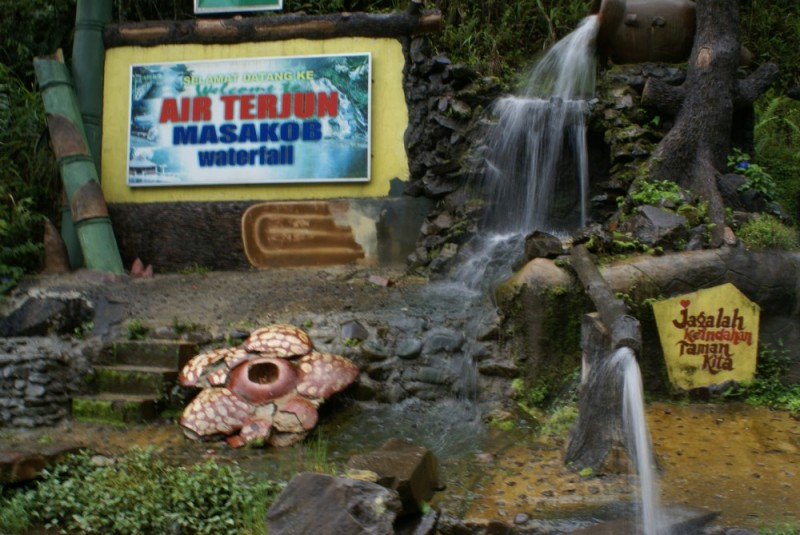 Masakob Waterfall, Tambunan, Sabah, MY