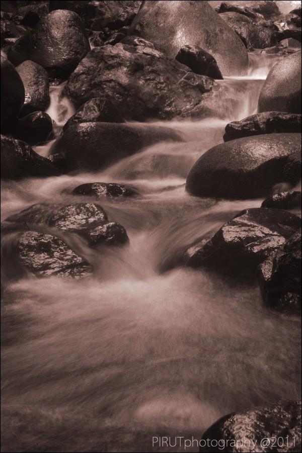 The River Flow [B&W Version]