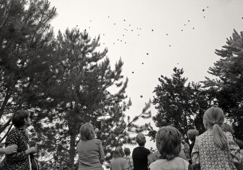 Ross's Balloons