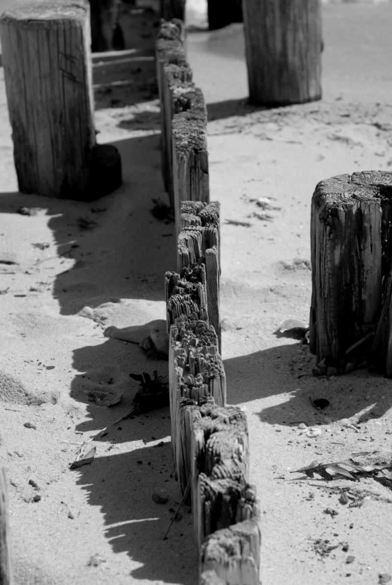 Old sand barrier on the beach