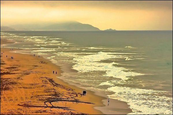 Paciific Coast