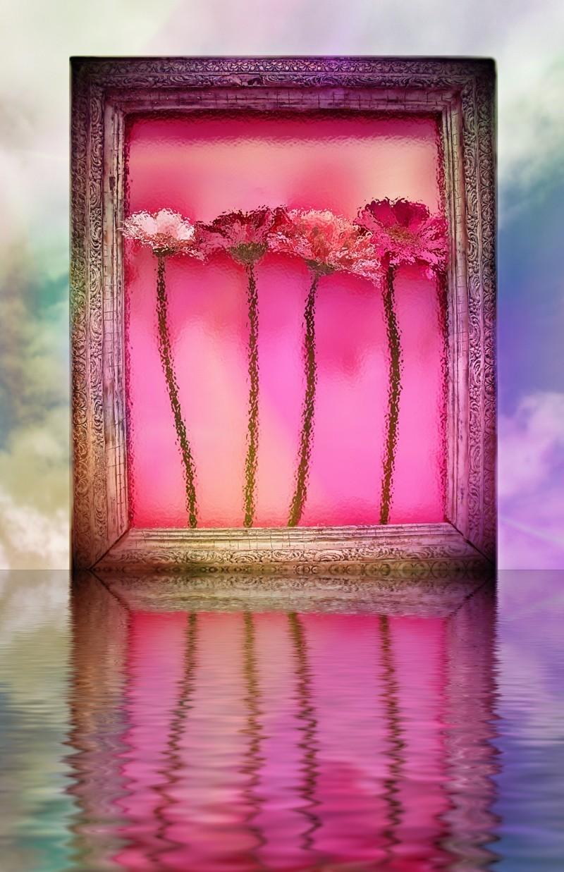 Spring in  a frame