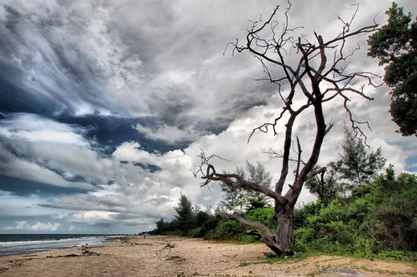Batu Layar Beach, 96km southeast of Johor Bahru