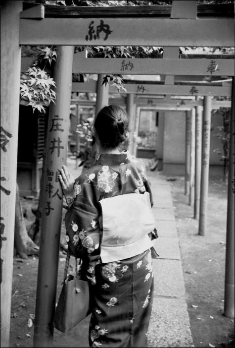 kimono image girl woman tokyo 着物 女 着物姿 東京 鳥居 temle
