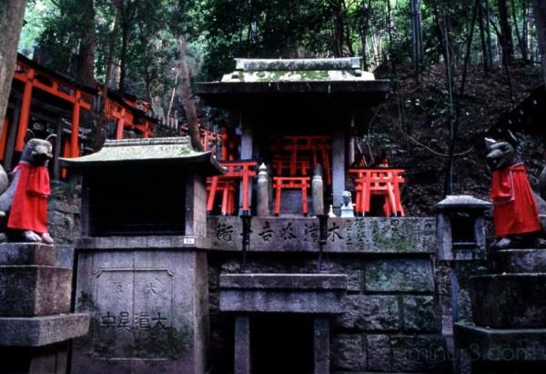 inari shrine kyoto 京都 稲荷神社 神社