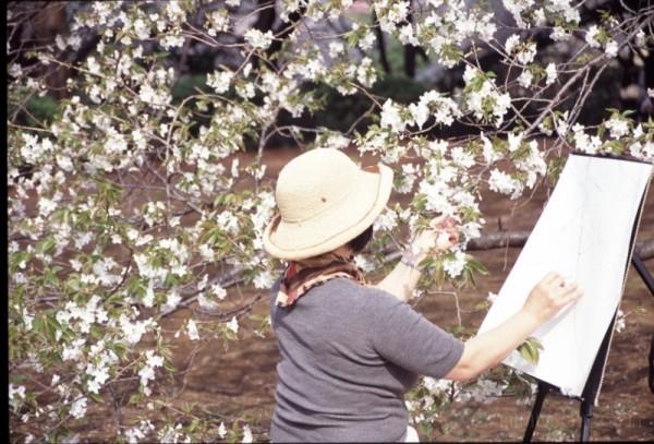 art phone japan painting blossoms 新宿御苑 hanami