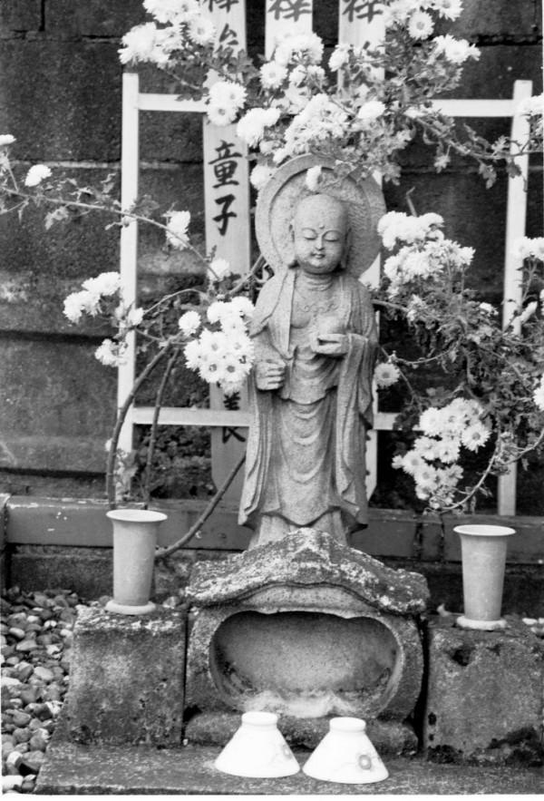 cemetary stone pond japan statue lake lilly buddha