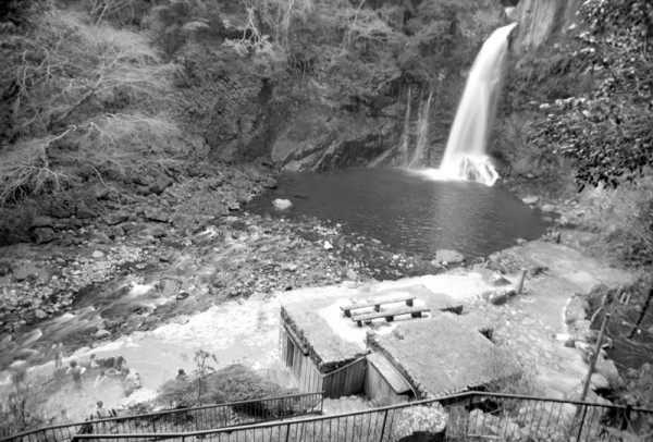 bathing next to waterfall 滝 伊豆 熱海 蛙 温泉