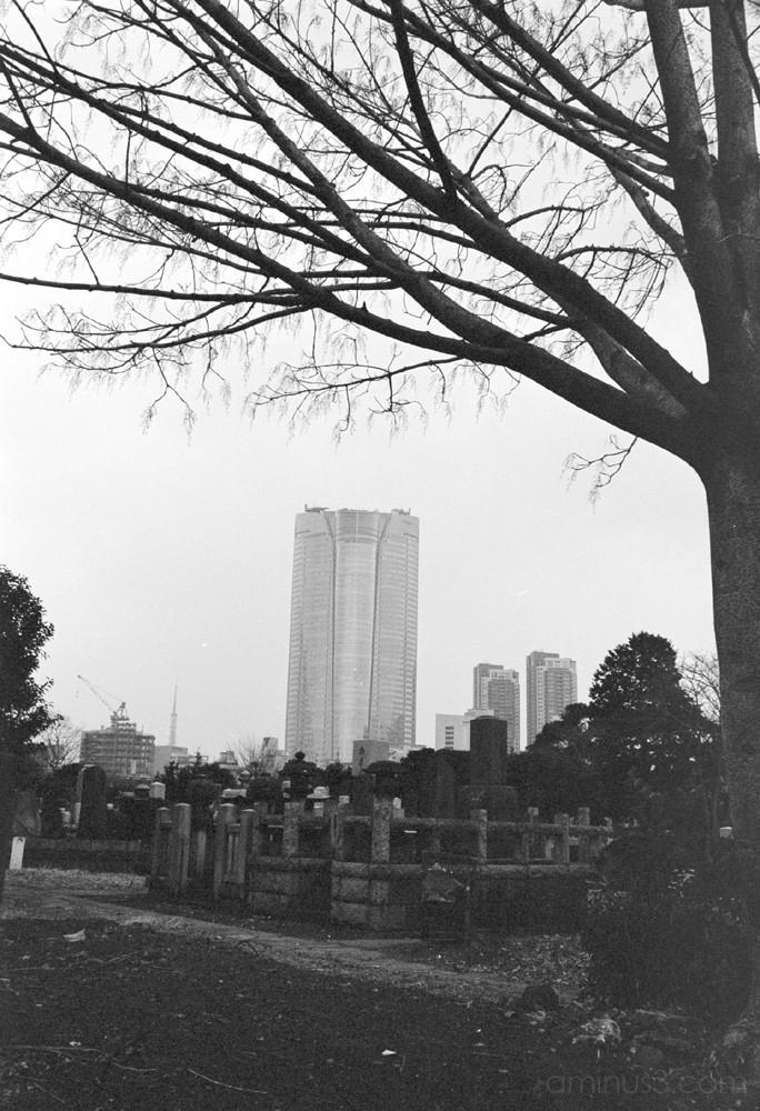 tokyo roppongi hills grave graveyard cemetery