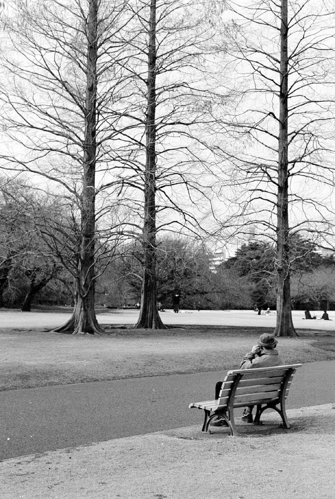 shinjuku tokyo park trees man old elderly gentlema