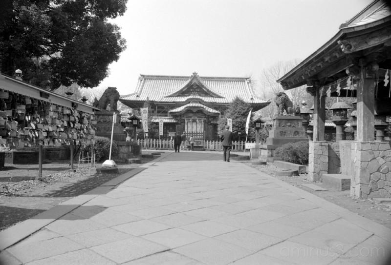 ueno hachimangu 上野八幡宮  (ueno, japan)