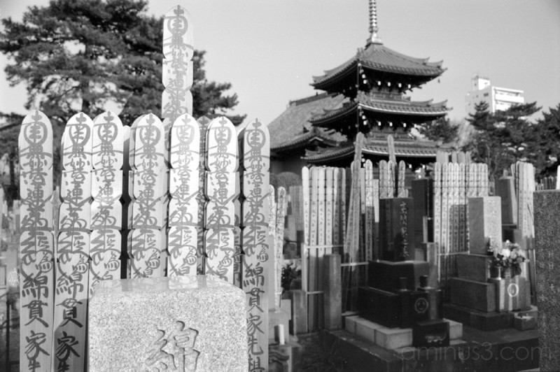 品川 東京 五重塔 墓地 pagoda shinagawa tokyo graveyard