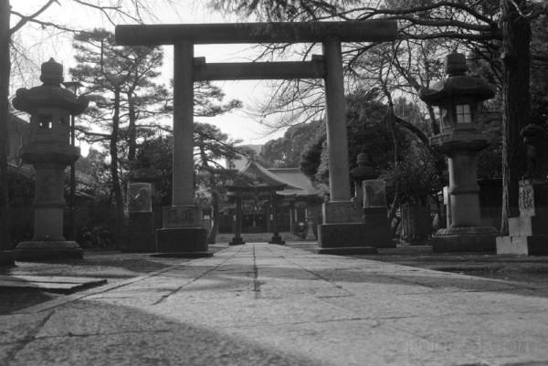 品川 東京 五重塔 japan pagoda shinagawa tokyo 鳥居 torii