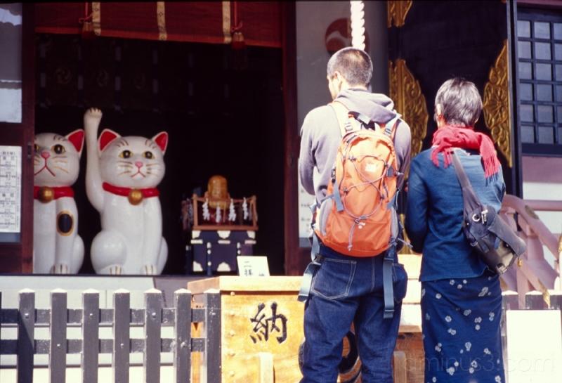 two people pray at 今戸神社 浅草 asakusa cat temple 猫