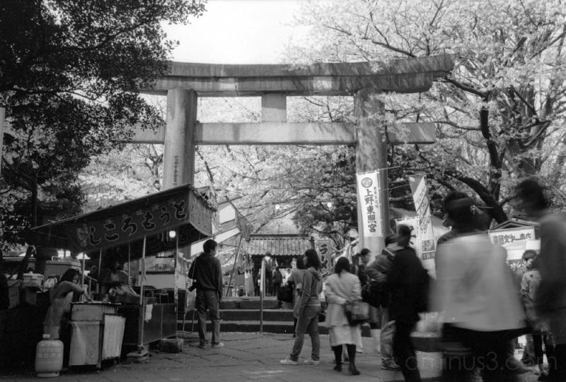 上野 東照宮 鳥居 屋台 torii ueno tokyo park 上野公園