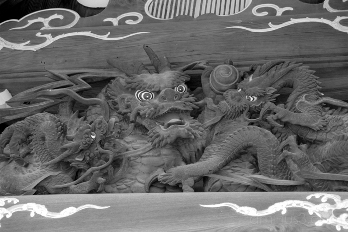 dragon design temple ueno nezu tokyo japan 竜 ねず