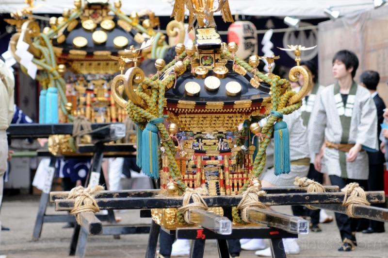 asakusa sanja matsui 浅草 三社祭