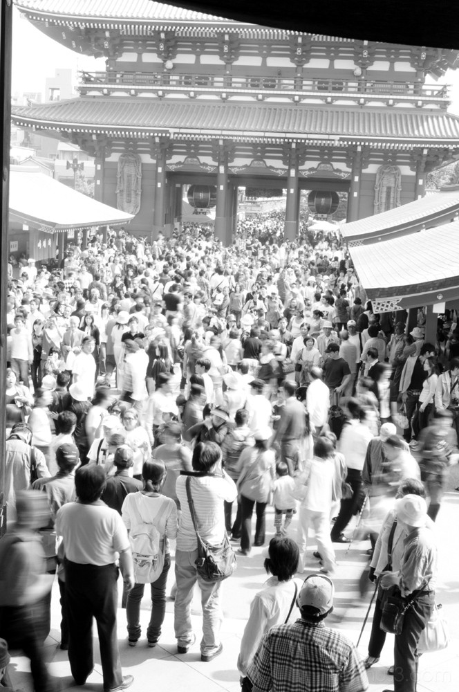 asakusa sensoji matsuri 浅草 浅草寺 祭
