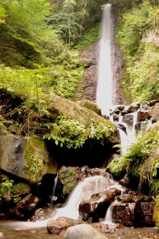 養老 gifu yoro waterfall water 滝 岐阜 水