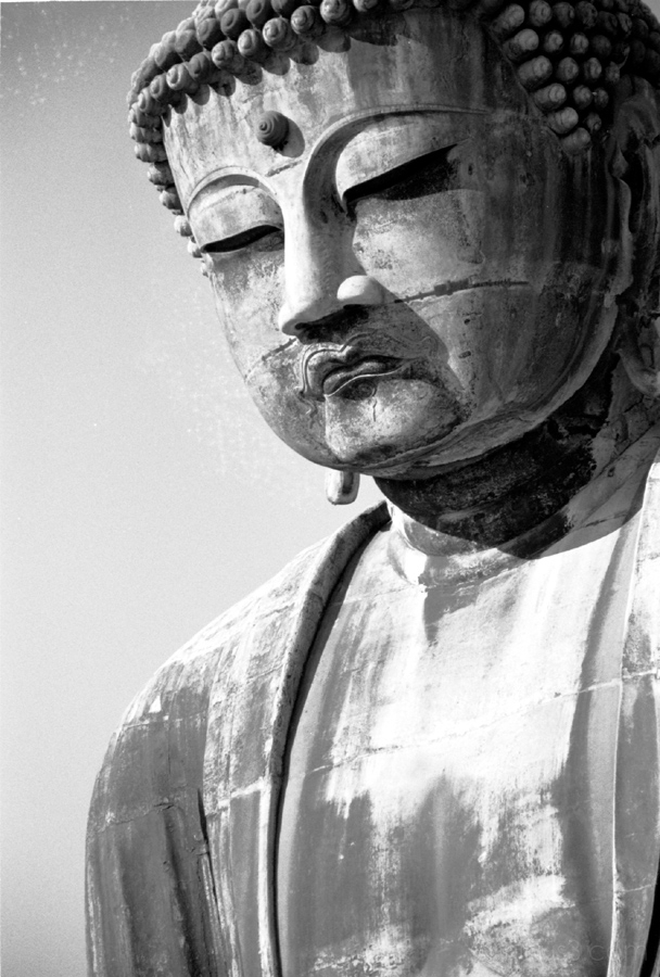 kamakura buddha daibutsu 鎌倉 仏 大仏