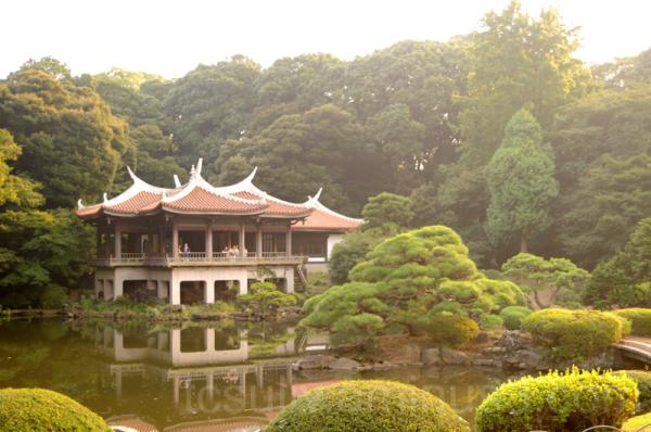 shinjuku gyoen 新宿 新宿御苑 teahouse 茶屋