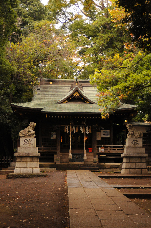 temple tokyo 東京 寺 meguro 目黒 blogs japan 성전 블로그 도쿄