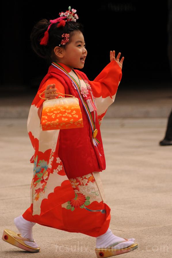 temple kimono 七五三 着物 寺 明治神宮 3-5-7 meiji-jingu 原宿ha
