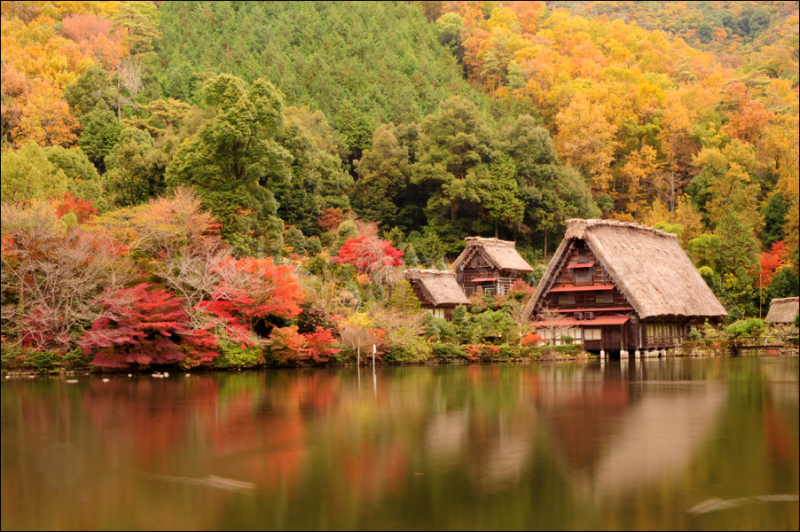 leaf autumn pond gifu 池 岐阜 秋 gassho 合掌造