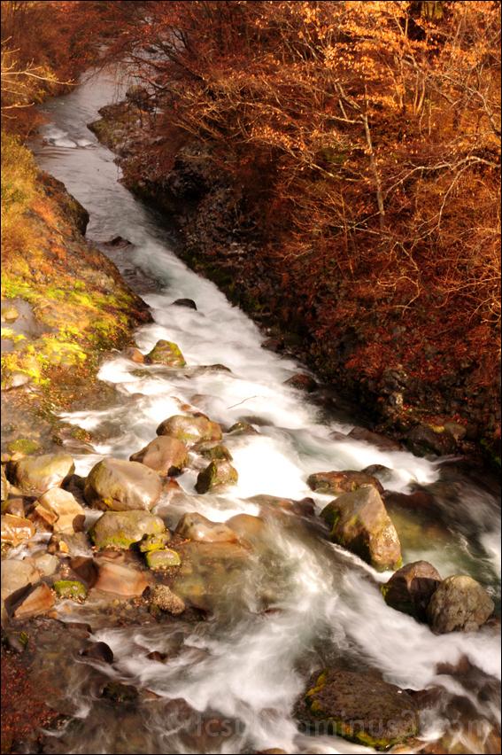 river rocks nikko 日光 石 川 自然 美しい写真 1280x1024