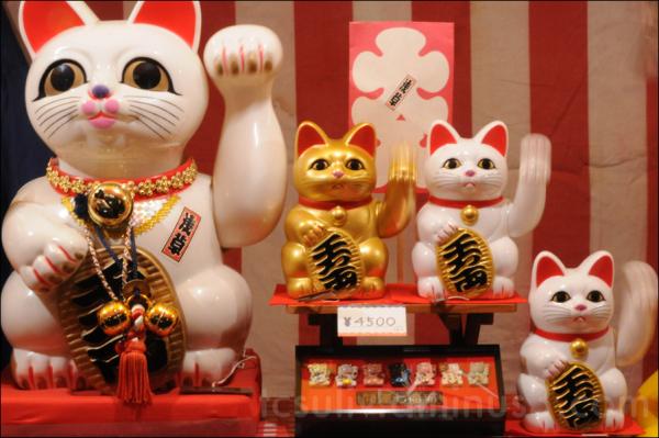 kitty lucky cat manekineko 招き猫 浅草 운이 냐옹 아사쿠사