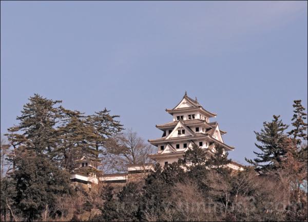gujohachiman castle 郡上八幡城