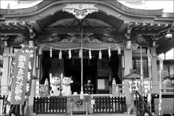 cats waving at imado shrine, asakusa