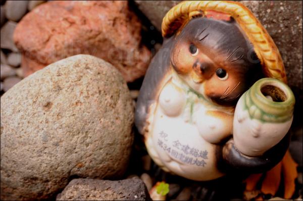 tanuki gnome rock 狸 石 庭 garden