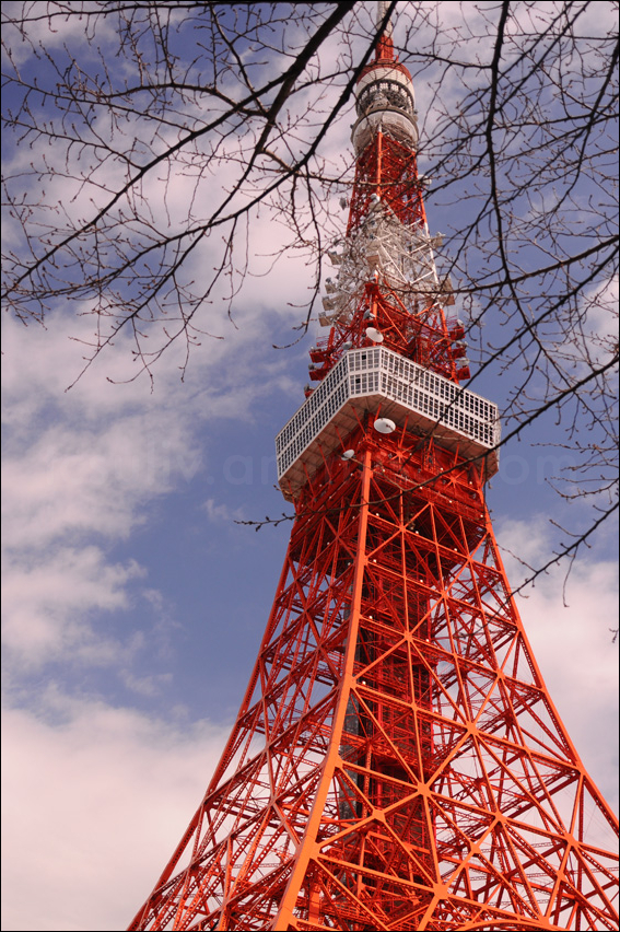 tokyo tower with blue sky 東京タワー