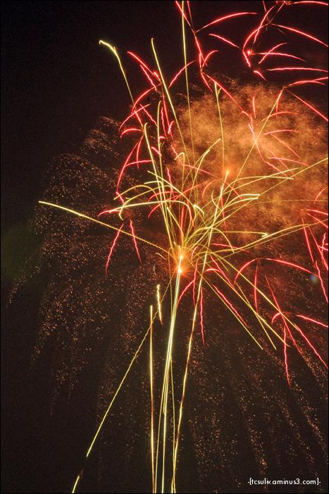 sumida fireworks '09 (asakusa)