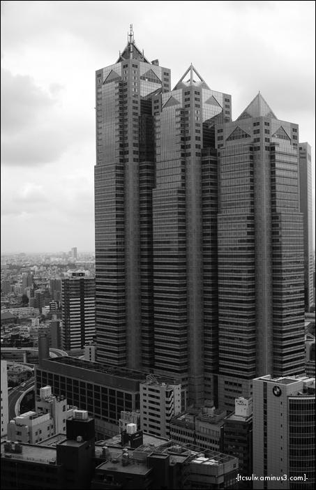 shinjuku skyscrapers 新宿の高層ビル