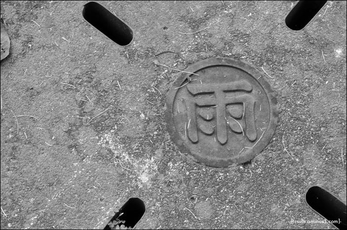 rain drain 点検カバー (shinjuku gyoen)