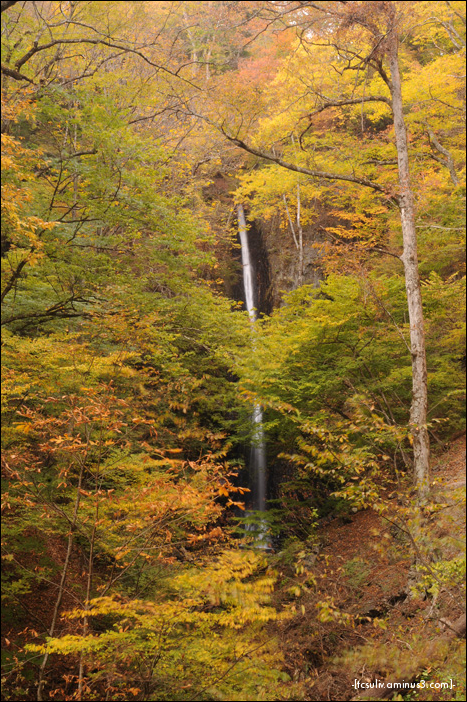 shira-ito waterfall 白糸の滝 (Yamanashi)