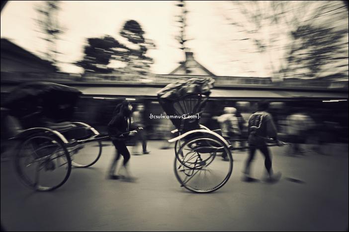 rickshaw 2010 人力車 (asakusa)