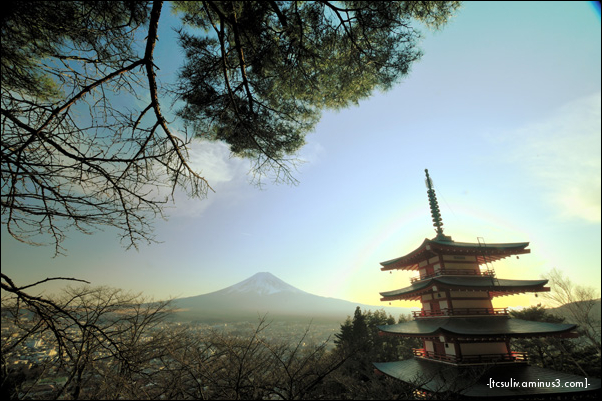 pagoda with fuji 五重塔と富士山 (fujiyoshida)