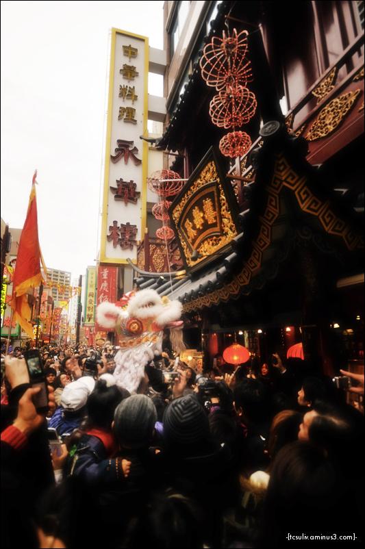 lion dance at chinese new year 2010, yokohama
